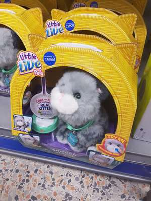 Little live pets kitten £13.75 instore @ Tesco