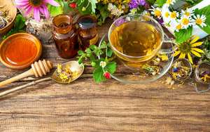 Free Herbal Tea Samples