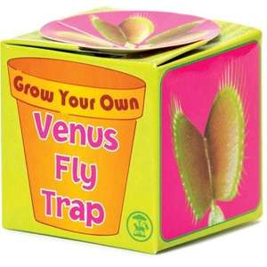 Feed me, feed me nooooow. Grow your own Venus fly trap £5.49 @ The Gift & Gaget Store (Free Wilkinson hydro 5 razor with every order)