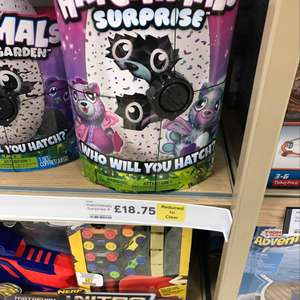 Hatchimals surprise £16.25 / £18.75 hatchimals glitter @ Tesco instore - Coventry Arena