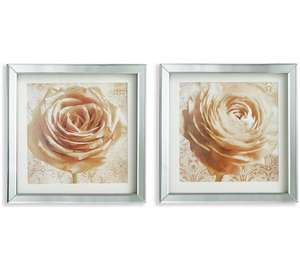 Collection Set of 2 Roses in Mirror Frame Prints - Cream - Argos - £5.99
