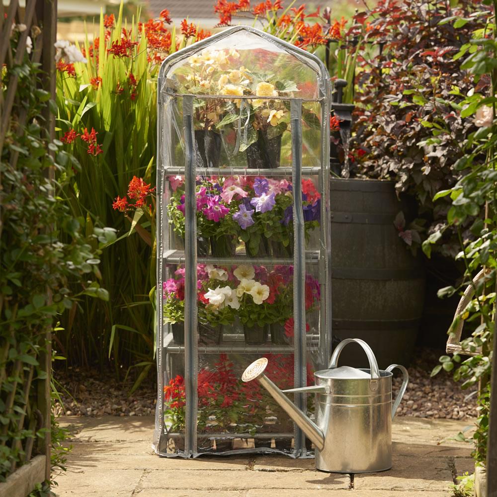 Wilko Mini Greenhouse now £10 C+C @ Wilko (Medium Walk-In PE Greenhouse with shelf staging now £30)