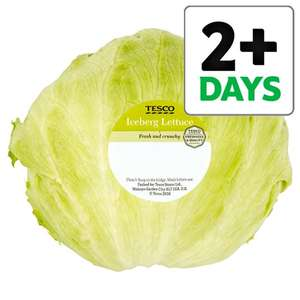 Iceberg Lettuce 39p from 24th at Tesco