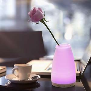 AUKEY Rechargeable Table Lamp / Glass Vase Combo with Touch + Remote Control, Dimmable Warm White Light & Wide Choice of Colors £12.25 Del with promo Prime / Non Prime @ Amazon (Sold by yueying and Fulfilled by Amazon)