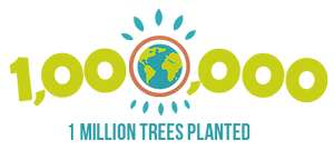 Plant trees for free with Ecosia