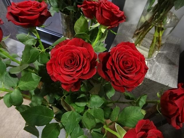 A Dozen Red Roses, £5 @ Aldi