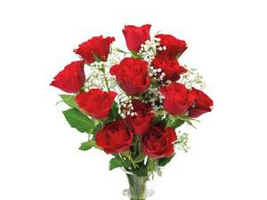 A Dozen Red Roses for 3.30 at lidl in store