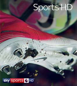 Sky TV & Sports HD offer £40 p/m 18 months £720 - (set up fees may apply)
