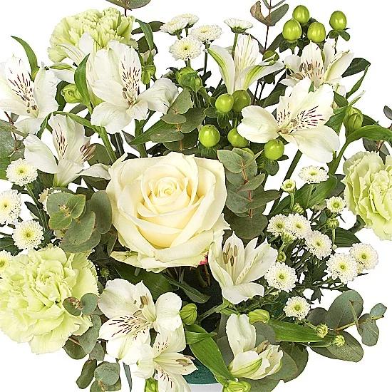 15% off The Mojito Bouquet with Code @ Serenata Flowera