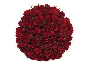 100 Sweetheart Roses £25.00 @ Lidl From 13th February