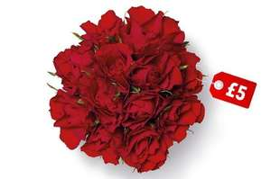 Dozen Red Roses £5 Lidl from 13th Feb