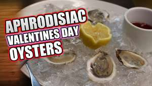 Valentine's Day Oysters the food of love - Fresh Oysters 25p each ( were 60p) @ Morrisons