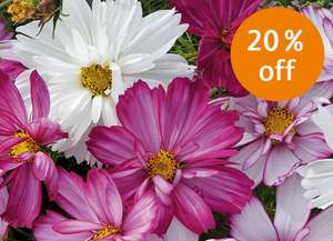 20% off all Plants, Bulbs and Seeds at Royal Horticultural Society (Ends Midnight Sunday)