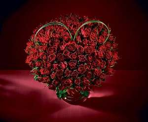 Bouquet of 100 red roses for £25  / Giant Single roses £10 @ Morrisons Instore