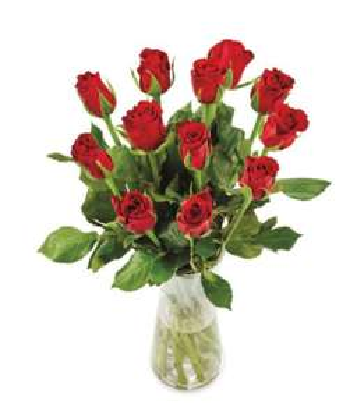 A Dozen Red Roses £4 @ Aldi