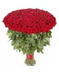 100 Red Roses scanning at £19.99 instore @ Aldi  - Kirkstall, Leeds Aldi