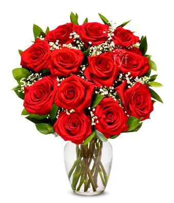 100 roses £12.50 @ aldi