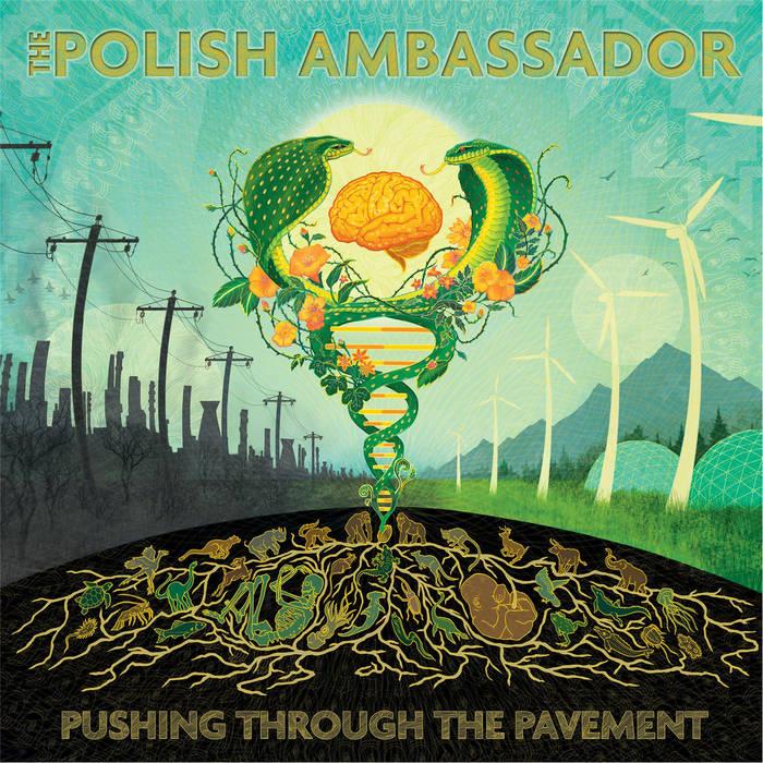 Name Your Price - The Polish Ambassador - Digital Album Download