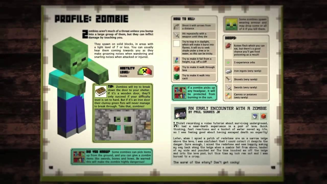Minecraft Beginners Handbook Hard Back Guides - B&M for £2.99 instore