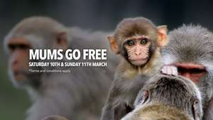 Mums Go Free to Longleat on 10th / 11th March (With full paying Adult or Child) - Book Online ( also Cheddar Gorge / Caves )
