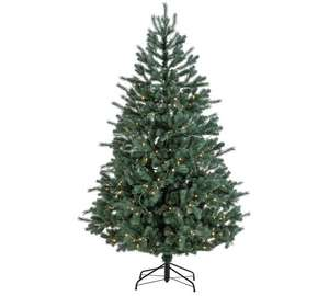 Collection 6ft Pre-Lit Christmas Tree - Frosted Blue + Free click and collect at Argos