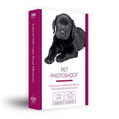 Pet Photoshoot gift experience £19 at Debenhams