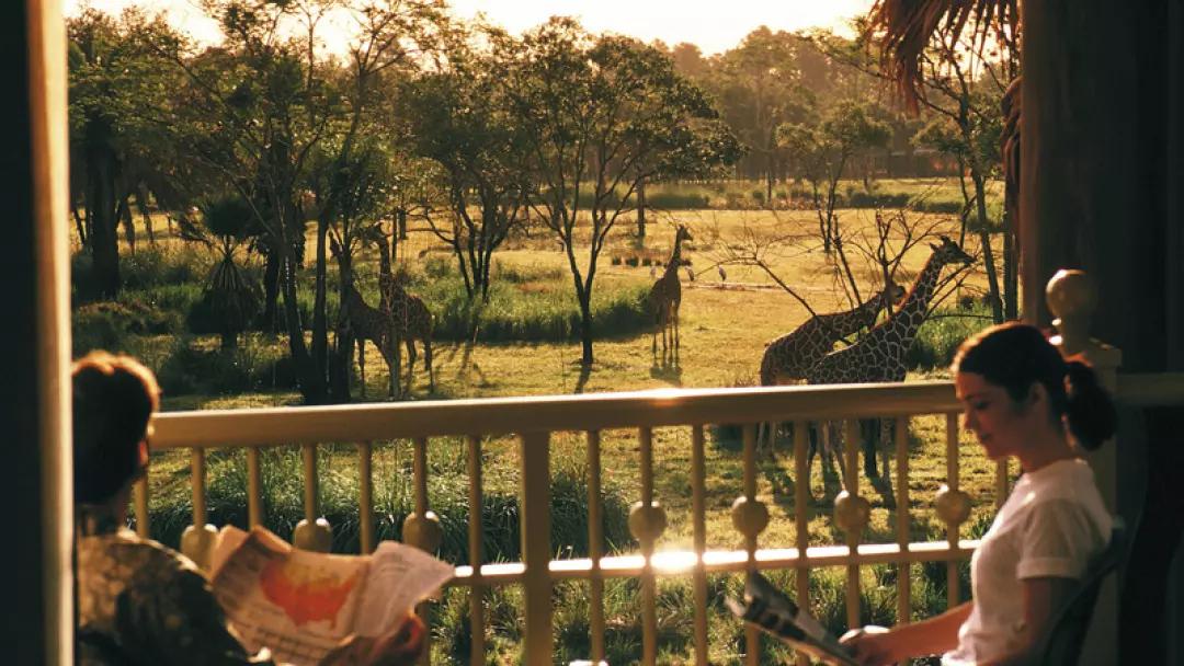A week in the Magic  - 7 nights at Walt Disney World - Animal Kingdom Lodge - £457 @ TUI