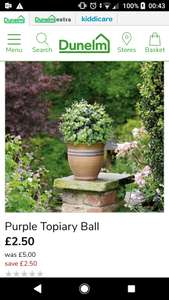 30cm topiary ball with removable chain for hanging £2.50 @ dunelm c&c