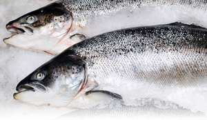 Whole salmon now £5.50 per kg @ Asda