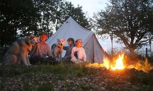 Kent: 1-Night Teepee Camping for Up To Four People with Husky Interaction, Breakfast and Dinner £101.15 w/code via Groupon