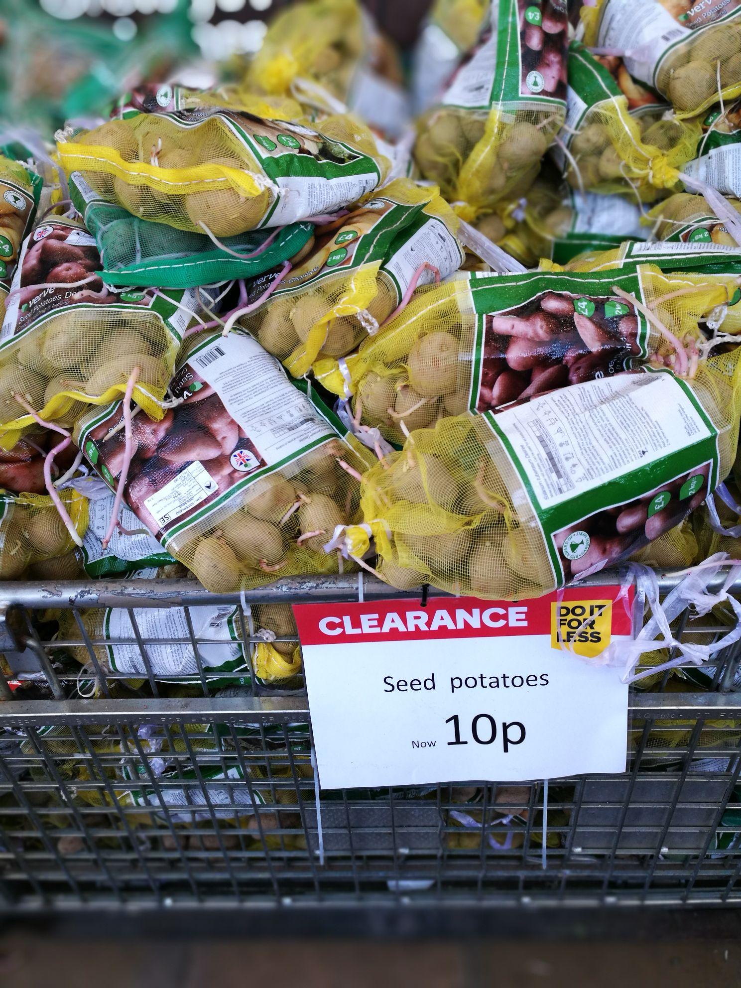 Seed potatoes for cheap 10p @ B&Q