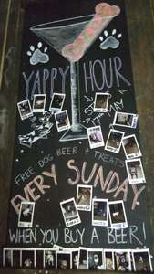 Yappy Hour at Brewdog Liverpool (maybe nationwide) every Sunday, free dog beer and treats when human beer purchased - £2