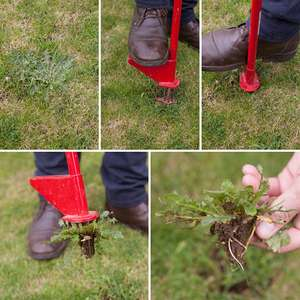25% off Mr Weedy Easy weed Removal Tool with Code @ Ideal World