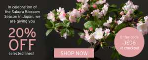 20% off Selected Artifical Arrangements with Code @ Bloom