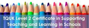 Level 2 Certificate in Supporting Teaching and Learning in Schools* (free for eligible applicants)