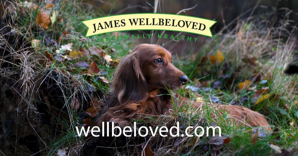 free james beloved dog food