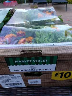 Growers selection box 40+ plants - £10 @ Morrisons