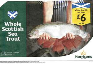 Whole Fresh Scottish Loch Sea Trout £6/k - MORRISONS - Avg £21 per fish - Instore Only