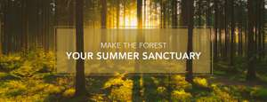 10% off Forest Holidays in June