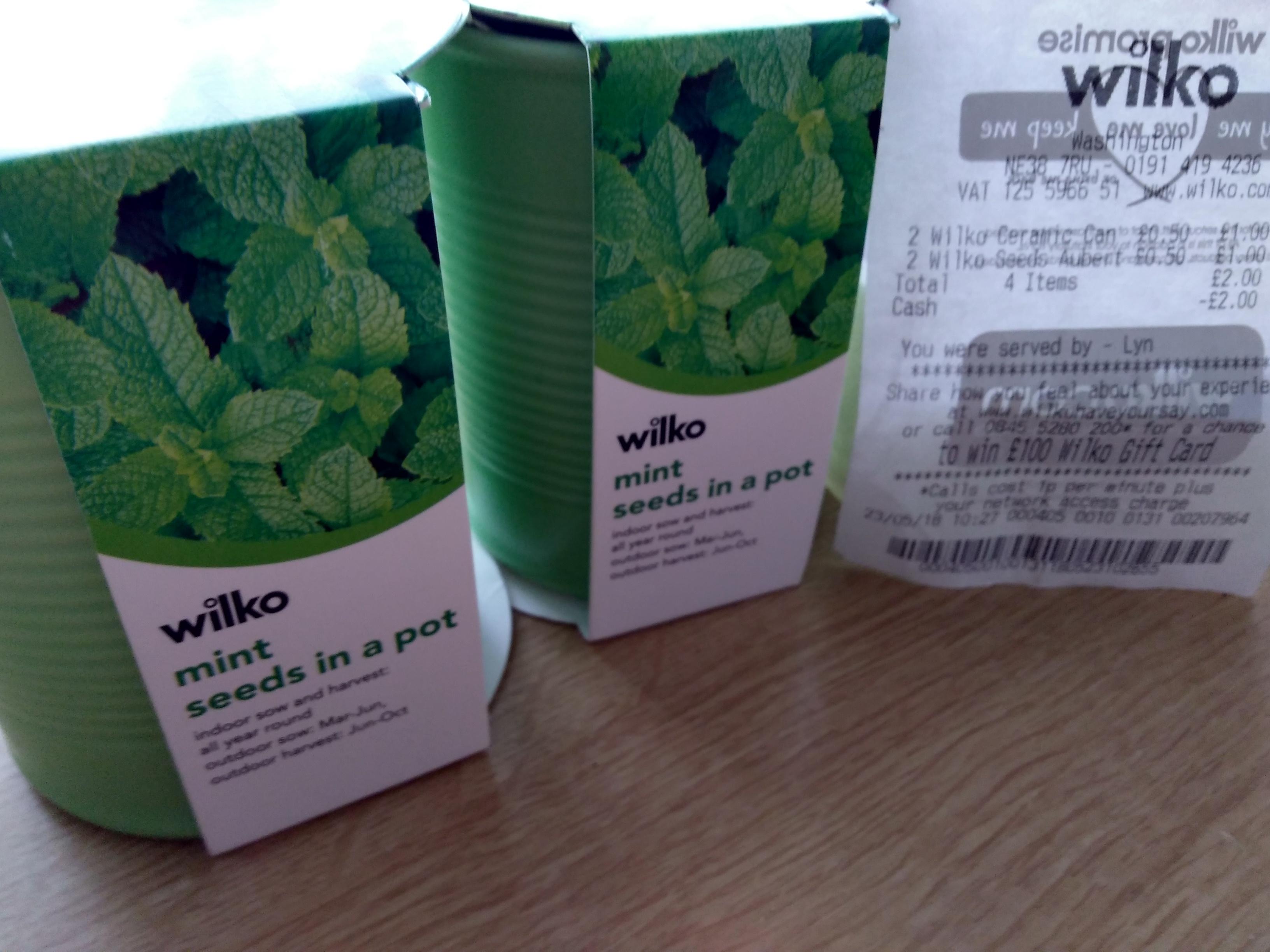 Mint Seeds in a ceramic pot 50p at Wilko
