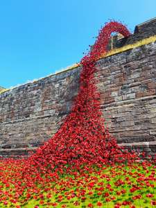 Carlisle Castle poppies weeping window free entrance til 8th July