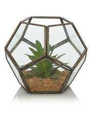 Glass Terrarium now £6 @ Asda c+c