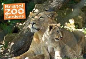 Free child entry to Bristol Zoo  with each full paying adult.