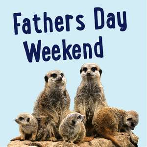 Free entry for Dads at Twycross Zoo on Fathers Day Weekend 2018  with paying adult or child
