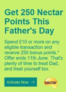 Get 250 Nectar points this Father's Day on ebay if you spend £10 or more