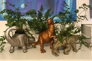 6 different types of dinosaur planters £5 @ Morrisons