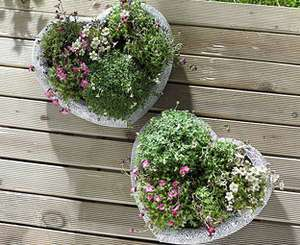£5 off Heart Planters with code @ Scotts off Stow