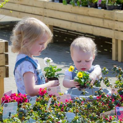 Free Little Seedlings workshops throughout summer holidays @ Dobbies Garden centres