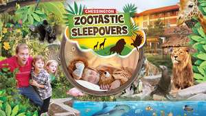 Zootastic Sleepovers @ Chessington - Overnight stay in Resort Hotel, One day entry to the ZOO & SEA LIFE centre, How to be a Zoo Keeper LIVE!, Giraffe sneak peeks, Animal + Character Meet & Greets  + More from £28pp (Based on Fam 4)