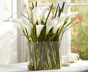 15% off Large Artificial arrangements with code @  Bloom